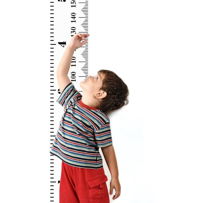 Giant ruler height chart