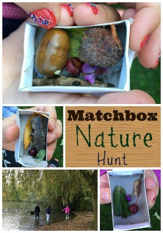 Matchbox Nature Hunt