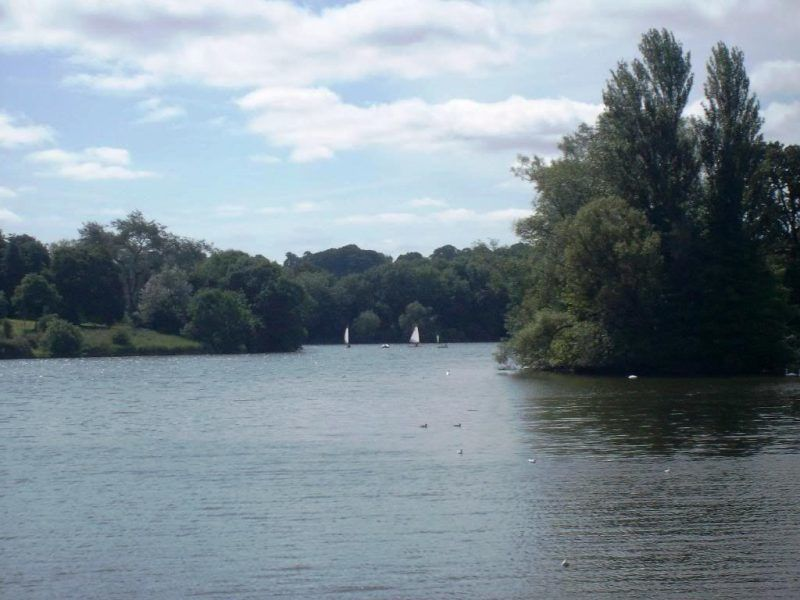 The lake at Coate country park
