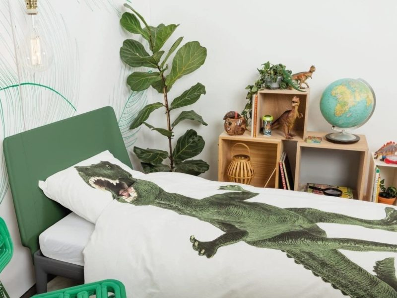 Dinosaur bedding set